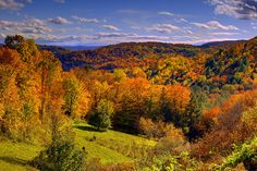 Valley Of Fall Color - Vermont