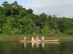These ecotourists are being paddled around a quiet corner of Lake Oguemoué in Gabon, Central Africa. Paddle, Africa, Corner, Afro