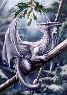 Anne Stokes Snow Dragon Yule card features a gorgeous dragon perched on a branch with a sprig of holly and mistletoe hanging above it s head A 3d Fantasy, Fantasy Kunst, Fantasy Artwork, Anne Stokes, Magical Creatures, Fantasy Creatures, Woodland Creatures, Yule, Snow Dragon