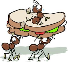 cartoon ants picnic - Google Search