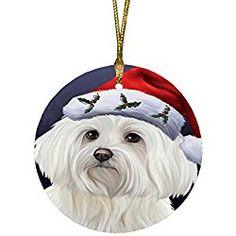 Maltese Christmas Ornament Portrait with Santa Hat Round Ornament Maltese  Dogs 446ab9d6d