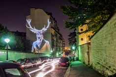 French artist Julien Nonnon's latest work Safari Urbain it's a very strange and surprising vision of the Parisian wildlife. The work comprises a series of photographs featuring animals redesigned and projected on facades of buildings through an embedded video-projection system.