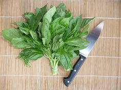Basil Isn't Just for Pesto! #Herb #EssentialOil #Aromatherapy | @Amy Galper Organic Spa Magazine Blog | #OrganicSpaMagazine