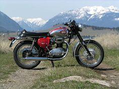 Made in the year of my birth; British Motorcycles, Cool Motorcycles, Triumph Motorcycles, Vintage Motorcycles, Bsa Motorcycle, Motorcycle Design, Scooters, Push Bikes, Hot Bikes