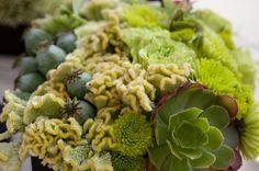 green monochromatic flower arrangement