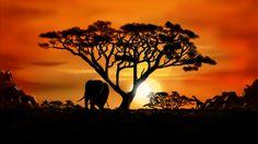 African Landscape just Beautiful..