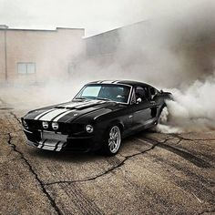 Must See Ford Mustangs |All Collector Cars