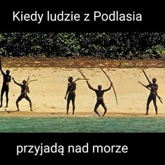 Kiedy ludzie z podlasia przyjdą nad morze xD Very Funny Memes, True Memes, Wtf Funny, Hilarious, Polish Memes, Its Time To Stop, Httyd, Good Mood, Best Memes