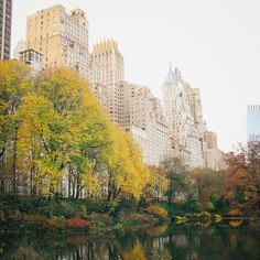 New York City - Autumn - Central Park Skyline and Fall Foliage