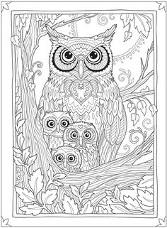 Welcome to Dover Publications Owl Coloring Pages, Cat Coloring Page, Free Adult Coloring Pages, Coloring Book Art, Fall Coloring, Colouring Sheets For Adults, Dover Publications, Creations, Drawings