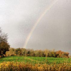 Somewhere over the #rainbow...