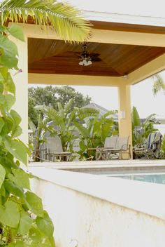 This beautiful cabana, located by the water in Tampa, FL, contains a ceiling made from East Teak's ipe and has received many compliments Ipe Wood, Cabana, Teak, Pergola, Ceiling, Outdoor Structures, Water, Beautiful, Plants