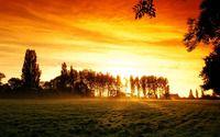 Misty sunrise on the field wallpaper 1920x1200 jpg