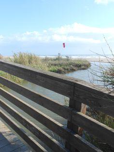 Il ponte sul Tredenari, punto di osservazione ideale sulla Riserva, la spiaggia, la foce.