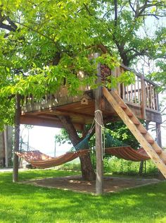 Love the tree house with hammocks underneath.