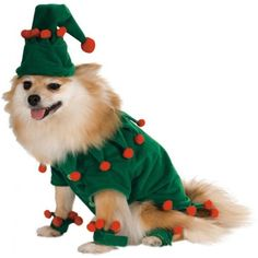 Elf-Dog-Santa-Claus-Helper-Doggy-Christmas-Pet-Costume