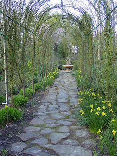 Spring Tunnel by Martha Tate, gardenphotooftheday