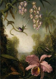 """Martin Johnson Heade. """"Orchids and Spray Orchids with Hummingbirds"""""""
