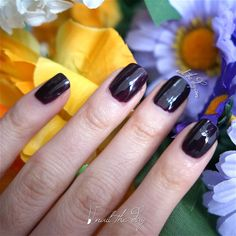 Face of Australia - Dark Side - Maleficent - Nail Swatch - http://nailtheday.com/2015/01/face-australia-dark-side-maleficent-nail-swatch/