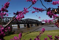 Harahan Bridge (the old one) in Spring
