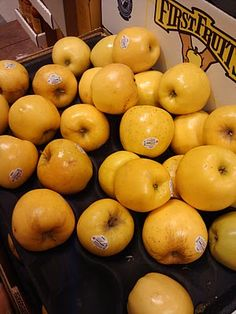 Look what we found at the Grocery Store! Opal Apples, Emily Ann, Beauty Shots, Grocery Store, Fruit, Studio, The Fruit, Studios, Studying