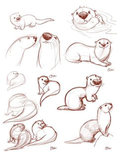 Resultado de imagen de how to draw otters holding hands Animal Sketches, Animal Drawings, Drawing Sketches, Sketching, Drawing Ideas, Cartoon Drawings, Cute Drawings, Otters Holding Hands, Character Drawing