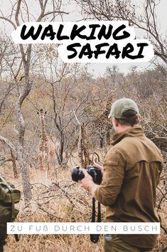 Noch näher in der Wildnis geht nicht! Ohne schützenden Wagen kann das Abenteuer Afrika so richtig beginnen. Zu Fuß durch den Busch zu Wandern ist eine intensive Naturerfahrung, die Sie weit weg von Ihrem Alltag und ganz nah an die kleinen und großen Wunder der Wildnis bringt. Erfahrene Guides werden Sie auf die Spuren der Wildtiere mitnehmen und in spannende Busch-Weisheiten einführen. #afrika #bushwalks #walkingsafari #safari #eco #nachhaltig #naturschutz #conservation #ecotourism #giraffe Safari, Namibia, Walking, Africa Travel, Far Away, How To Introduce Yourself, How To Fall Asleep, Wilderness, Appreciation