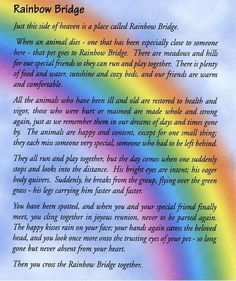 """""""The Rainbow Bridge"""" Most of us Breeders hand these out once a pet gets the word from the vet. Helps!"""