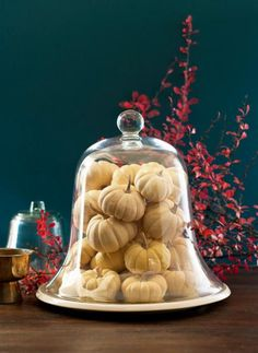 Pile miniature white pumpkins into a cloche or bell jar. It's easy and elegant! More Thanksgiving decorating: http://www.midwestliving.com/holidays/thanksgiving/easy-ideas-for-thanksgiving-decorating/?page=3
