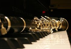 clarinet photos 033 by clarinettospazienza, via Flickr