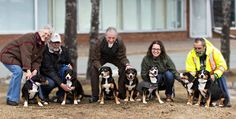 Moratel Entlebucher Mountain Dog Breeders