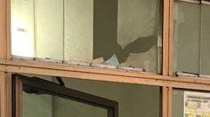 Offerte di lavoro Palermo  Nella serata di ieri sfondata la vetrina del suo Centro di assistenza fiscale  #annuncio #pagato #jobs #Italia #Sicilia Palermo: intimidazione al candidato Alamin Md
