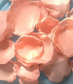 200 Peach Wedding Fabric Flower Petals on Etsy, $25.00  (don't use for beach weddings - not environmentally friendly for sea life)