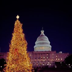 Excited for the lighting of the #nationalchristmastree? Tickets for the National Christmas Tree Lighting go on sale tomorrow! We're already hearing about the performance light ups and can't wait to see @kellyclarkson perform!