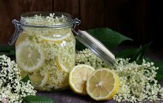 Cake & Co, Elderflower, Chef Recipes, Cupcake Cookies, Healthy Drinks, Superfood, Food For Thought, Delicious Desserts, Food And Drink