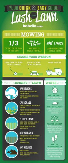 INFOGRAPHIC: Your Quick & Easy Guide to a Lush Lawn - - Lawn care can drive a person crazy during these dog days of summer, but using these pointers, you can say goodbye to scruffy, brown grass!