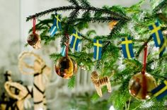 Celebrate Christmas in Sweden!