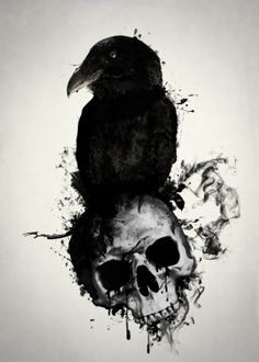 raven skull death viking norse mythology pagan hugin munin huginn muninn bird prey illustration spatter crow oden odin