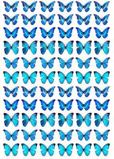 B02モルフォ蝶1.5cm レジン用透明フイルム