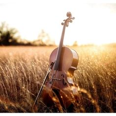 Gracie's Music! ❤ liked on Polyvore featuring backgrounds and pictures