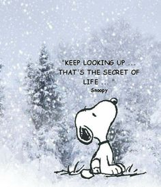 Great advice Snoopy!!