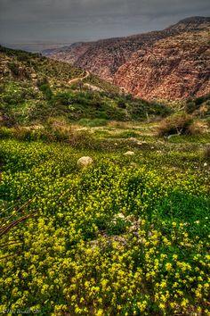 Getting Down with Nature at Dana Nature Reserve, Jordan  | The Planet D #GoJordan