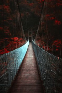 ~~Dark suspension bridge | Miaoli, Taiwan | by Hanson Mao~~