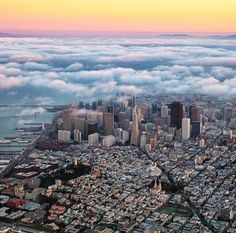 Morning Fog by Tom Jauncey by San Francisco Feelings