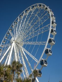Myrtle Beach, SC   Sky Wheel  200 Ft in the air!! love it