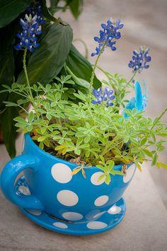 Alice in Wonderland Mad Hatter tea centerpiece