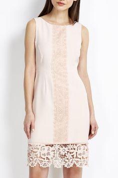 Petite Pale Pink Lace Panel Dress #wallisfashion #SS16