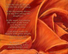Rose of Sharon Painting  - Rose of Sharon Fine Art Print