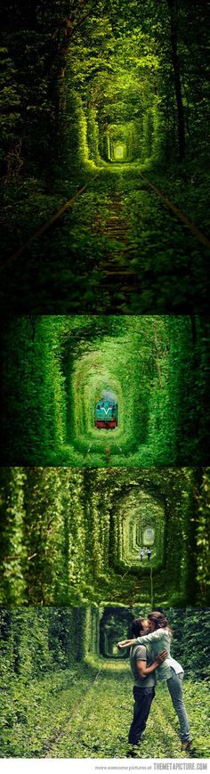 The Tunnel of Love in Ukraine {not exactly sure, tho, where do you go when the train comes through?}