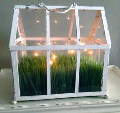 FOR SALE! Charming French Country Shabby Chic indoor Outdoor Greenhouse Terrarium with Faux Grass and LIGHTS!!